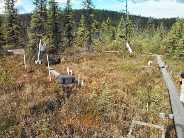 "The Beta (bog) site of the Bonanza Creek LTER ""APEX"" Wetlands"